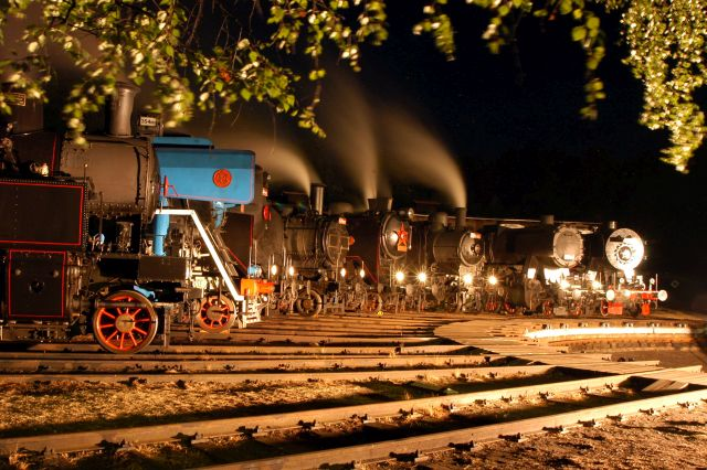 "Картинки по запросу Festival parních lokomotiv - ""Steam 50"""